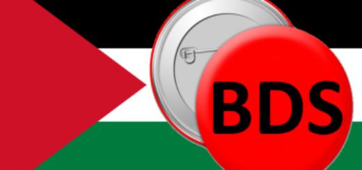 Palestinian Flag - 9 reasons I am pro-BDS